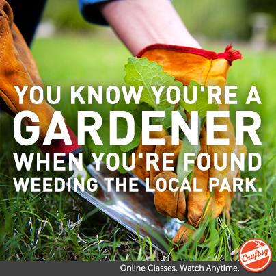 You know you're a gardener when you're found weeding the local park