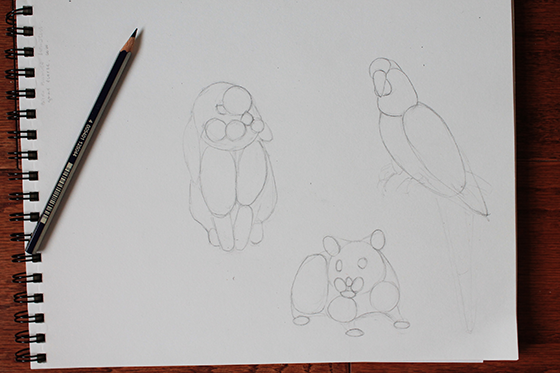 Outlinne of a bunny, hamster and parrot sketch