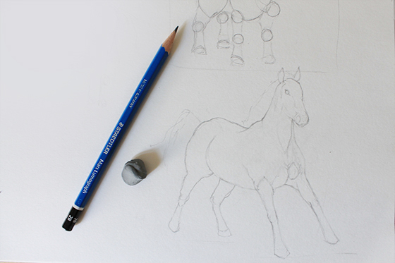 Horse's figure and facial features