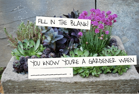 Fill in the blank: You know you're a gardener when...