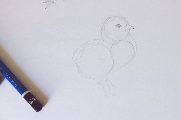 Chick drawing shape
