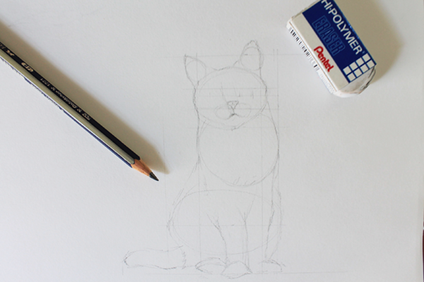 Start your cat drawing with light guidelines on cat