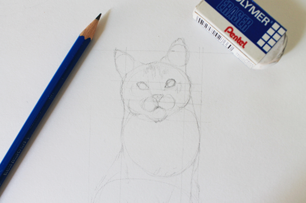 Draw the features of a cat's face