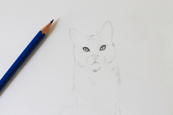 Draw a Realistic Cat's Eye