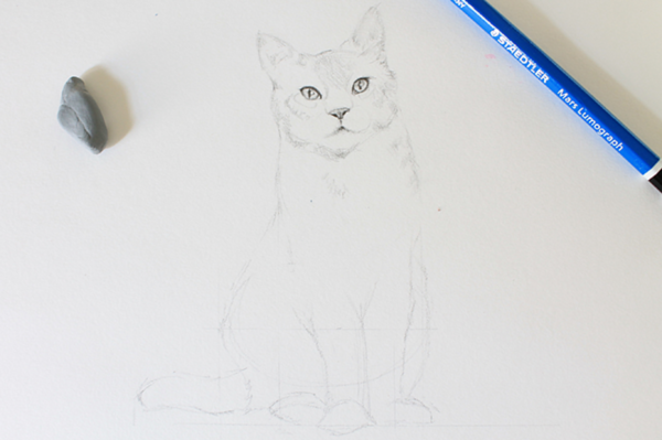 Unfinished Sketch of a Realistic Cat