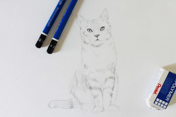 Drawing Realistic Fur on a Cat