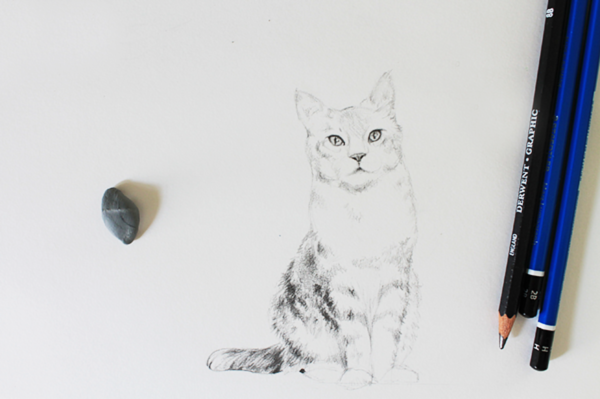 Layering fur on a realistic cat drawing