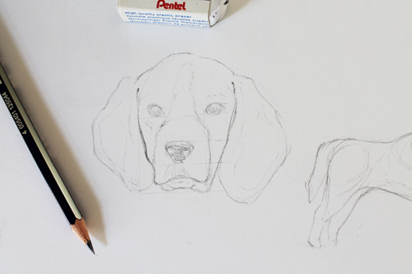drawing dogs tutorial