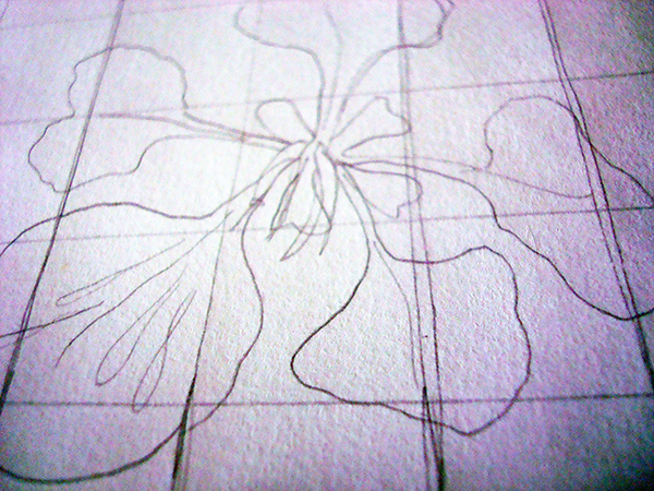 Pencil sketch of a flower on grid
