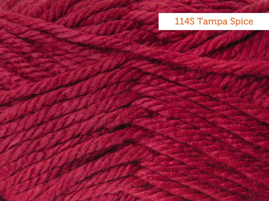 Lion Brand Hometown USA Yarn in Tampa Spice