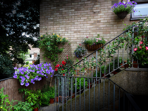 A walkway garden takes advantage of the space
