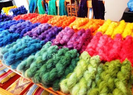 Dana Biddle's ColourSpun Yarns