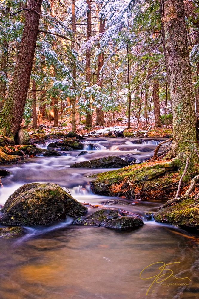 Forest Stream first snow.