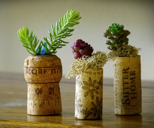 Cute cork planters star in this indoor garden design