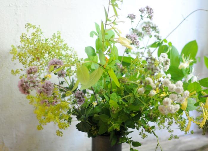 fresh herbal arrangement with oregano