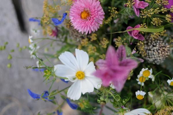 Bouquet of Fresh Cut Flowers