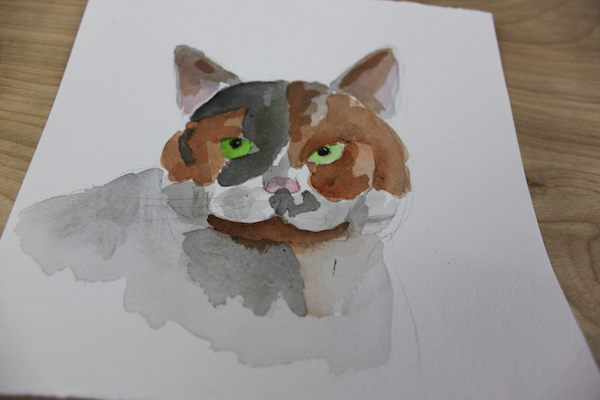 ink wash on cat with no lines