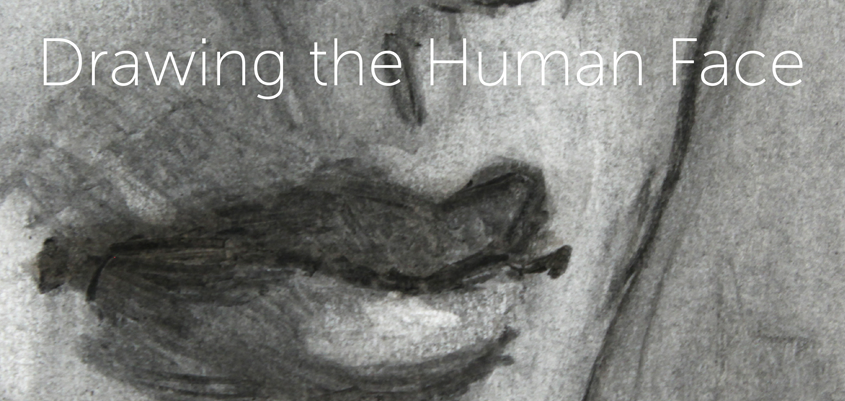 Drawing the Human Face: A Primer eGuide