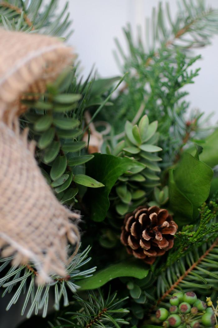 close-up shot of holiday greens