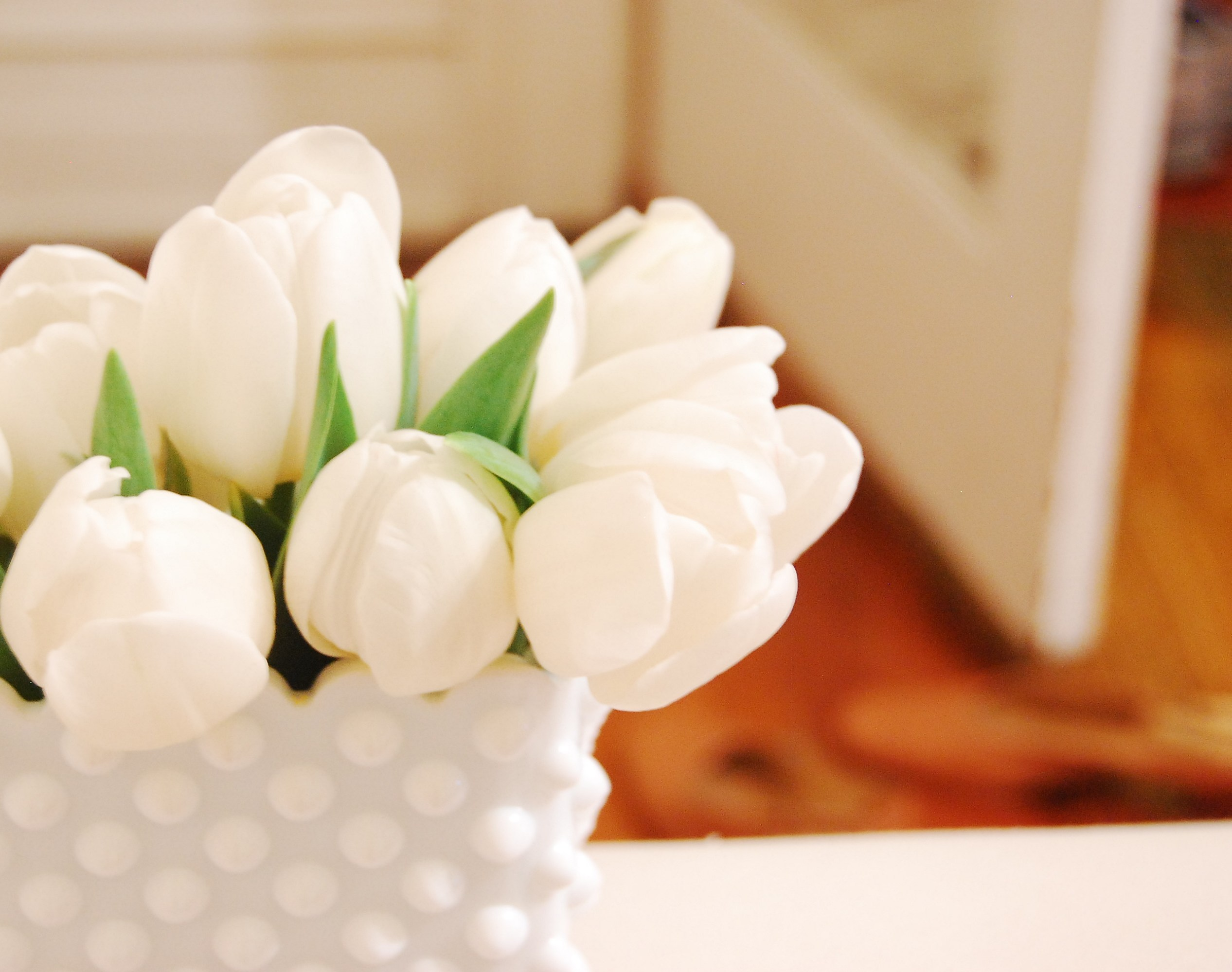White tulips in a white vase