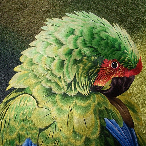 embroidered parrot