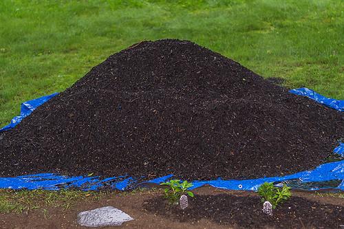 Soil amendments and compost really improve soil
