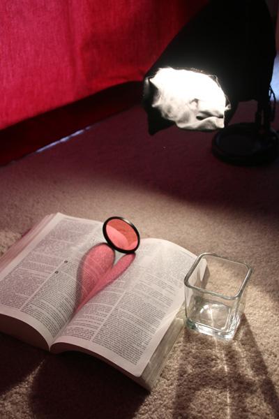heart-shaped shadow, setup, photography how to, book