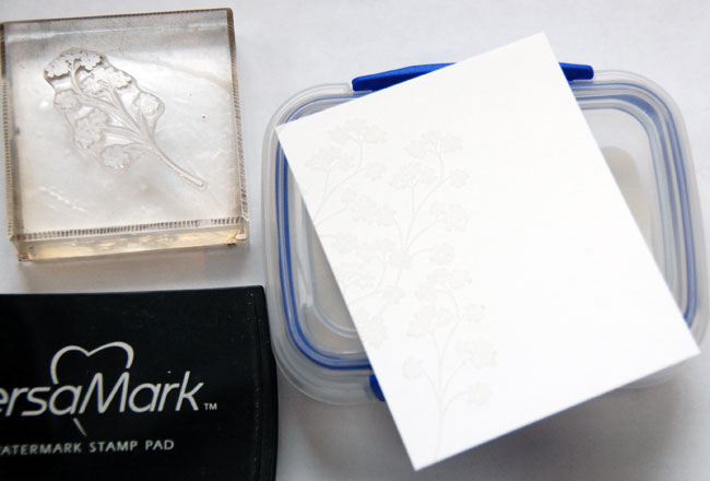 Step-2-Apply clear embossing powder