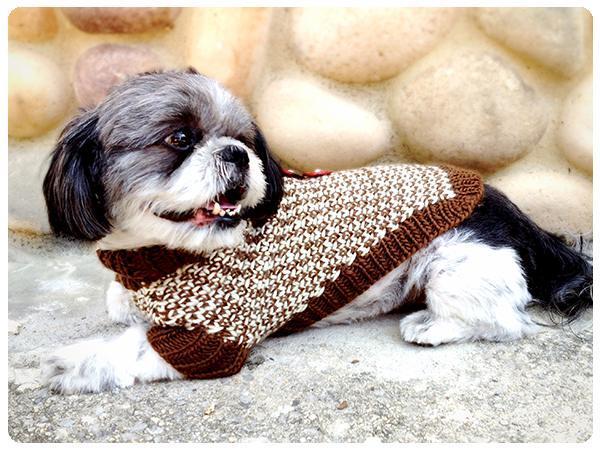 Twin Tweed Dog Sweater knitting patterns