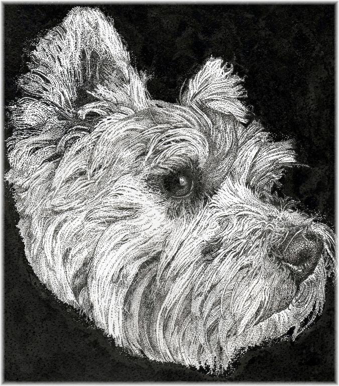 Stippled dog portrait