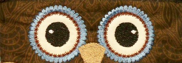 in the hoop owl eyes