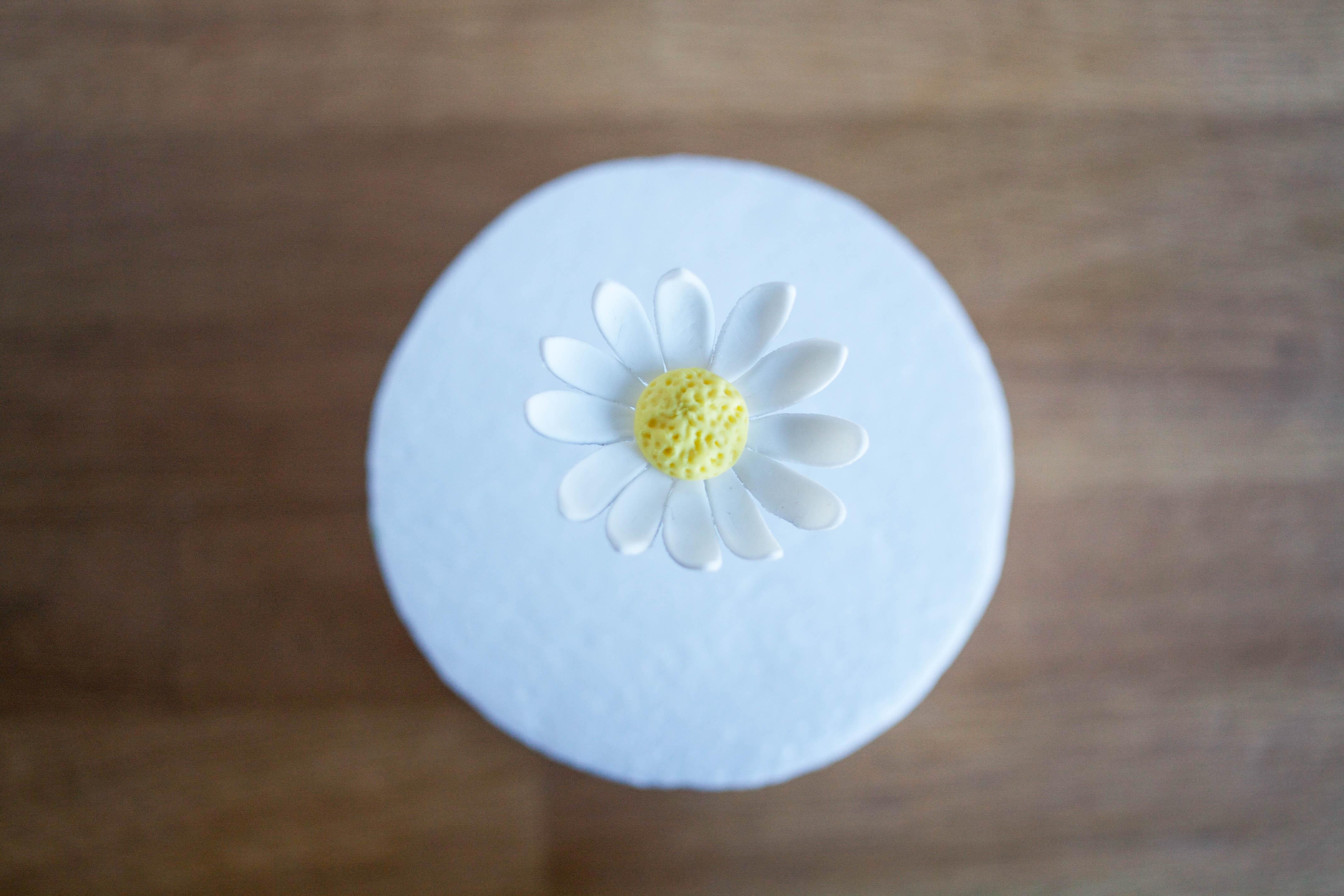 Quick and Easy Gum Paste Daisy | Erin Gardner | Bluprint