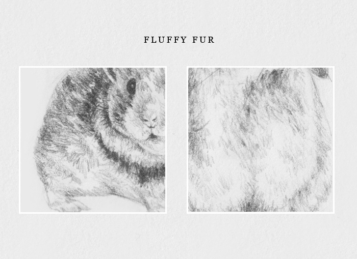 How to draw fluffy fur
