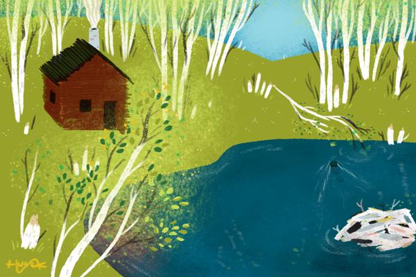 Aspens beside a pond