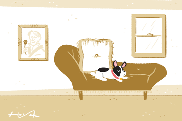 A dog sits on a couch in a room with a painting, and big pillow, and a window
