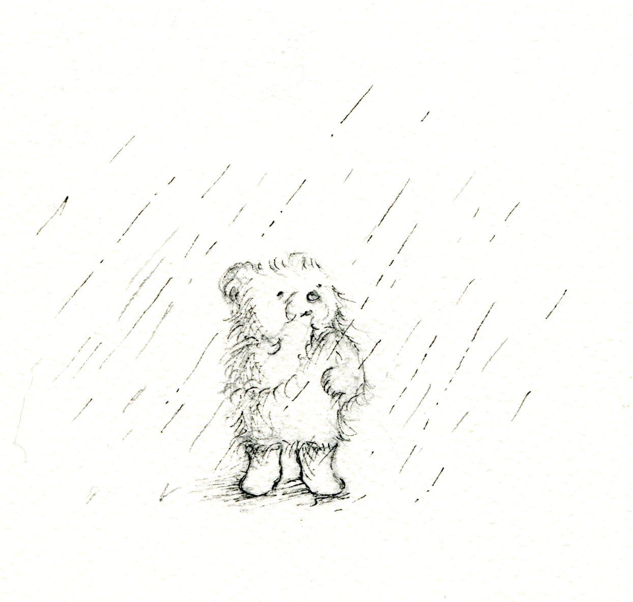 Teddy bear in the rain