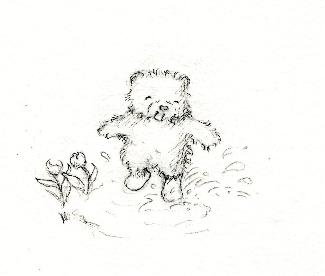 Teddy bear splashing