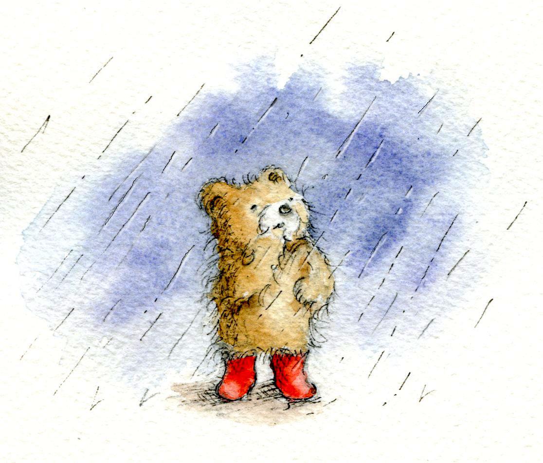 Teddy bear in storm
