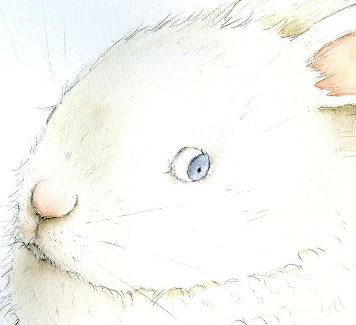 Paint a bunny eye
