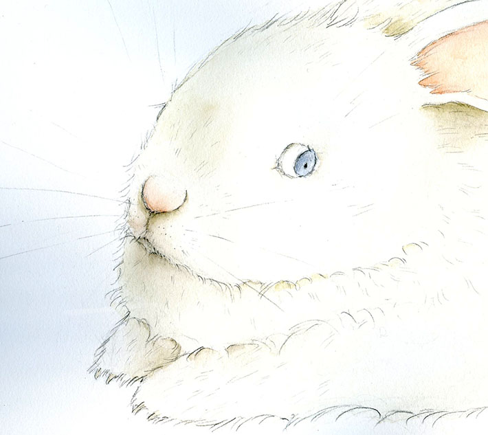 Drawing bunny whiskers