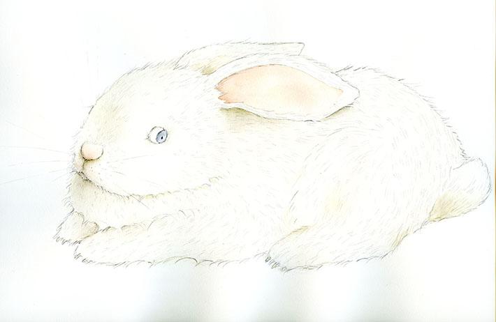 Beautiful bunny painting