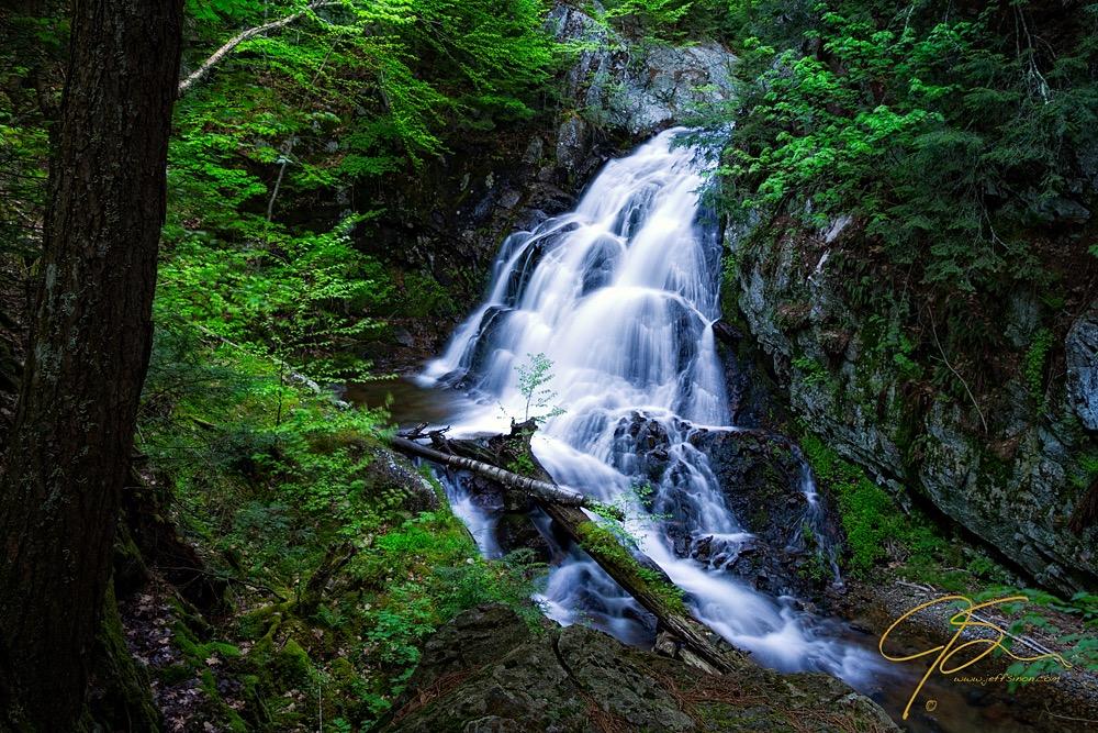 Bridal Veil Falls, Shannon Brook, Spring 2012
