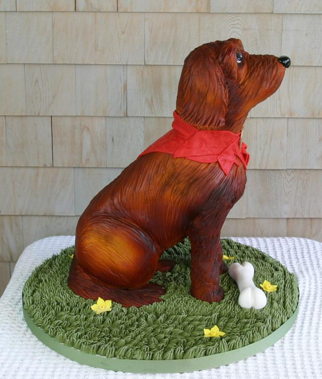 Dog cake by Bluprint member Rockport