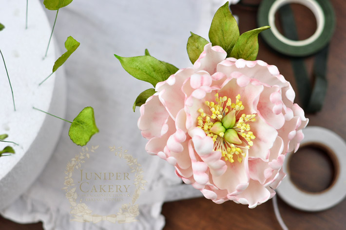 Guide to creating stunning yet simple floral cake toppers