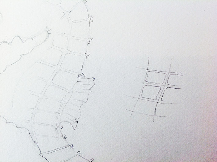 seahorse sketch details