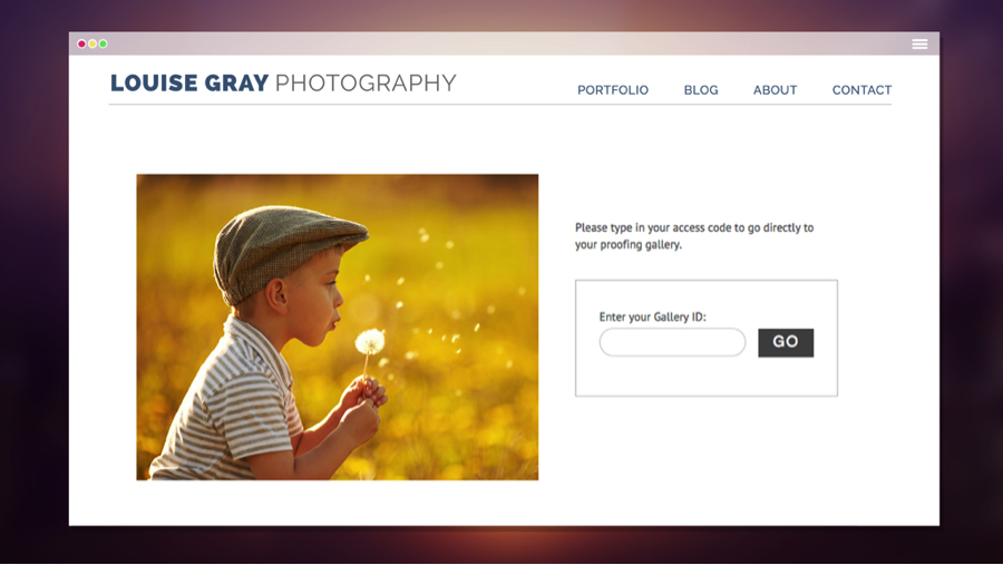 Photography website with visitor sign-in