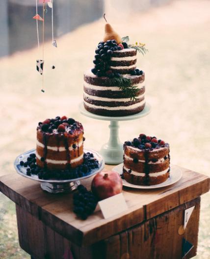 Naked Cakes by Alana Jones Mann | Erin Gardner | Bluprint