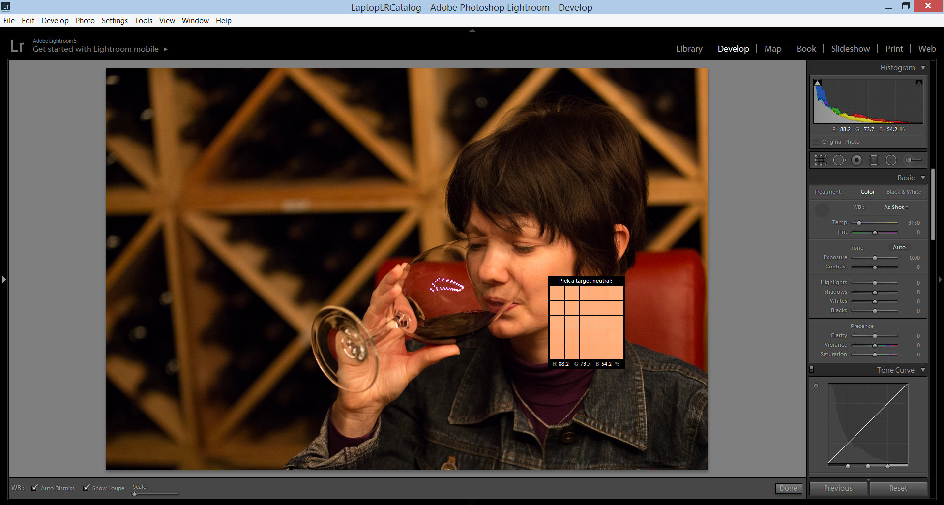 photo showing adjusting the white balance in Lightroom