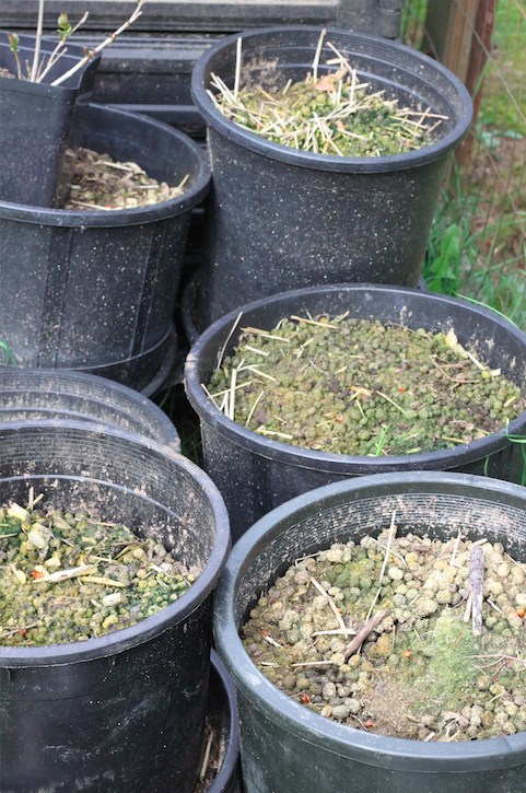 Compost in culverts