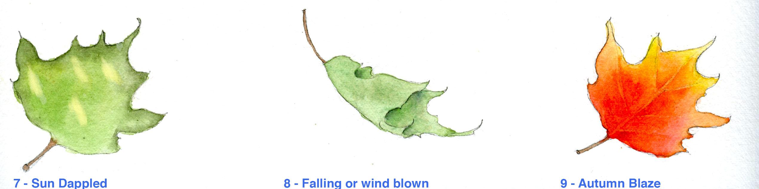 Fun leaf effects